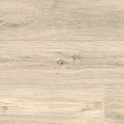 Panele podłogowe Dąb Lapponia